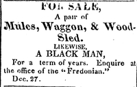 1822-01-03 For Sale, A Pair of Mules, Waggon, & Wood-Sled. Likewise, A BLACK MAN.jpg